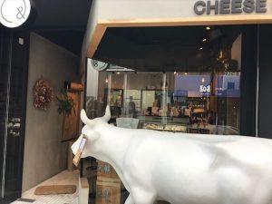 モーウ!大きな白い牛が目印