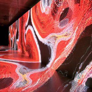 神経細胞!?のような強い赤が印象的な映像