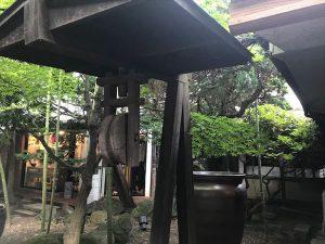 お庭の古井戸からカフェを撮影